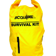 yellow-backpack-01